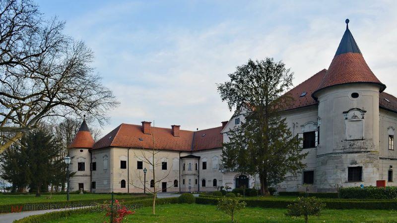 Lužnica Castle